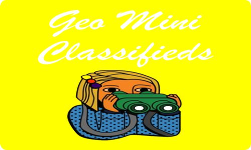 Wanted Business Development Manager All Over Geo Mini Ads